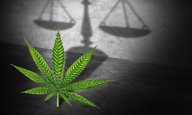 Image result for cannabis law