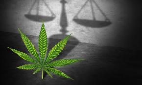 Forget Reefer Madness Pot Law Goes Mainstream