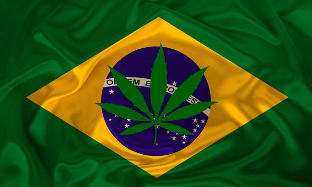 Green cannabis leaf on flag of Brazil.