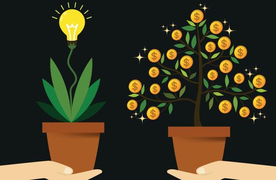 money tree and ideas