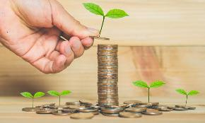 How GCs Are Becoming the Leaders on Corporate Sustainability