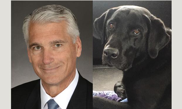 Mark LeHocky, left, attorney, and Gunnar, right, his dog/courtesy photos