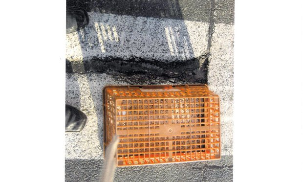 Dorene Morgillo-Sikorski was walking in the parking lot of a Meriden Big Y in 2016 when a shopping cart she was walking with went into this large pothole causing her to fall forward and on top of the cart, causing injuries.