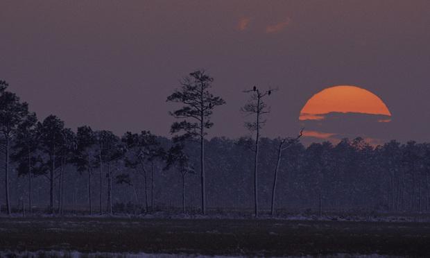 Blackwater National Wildlife Refuge/courtesy photo