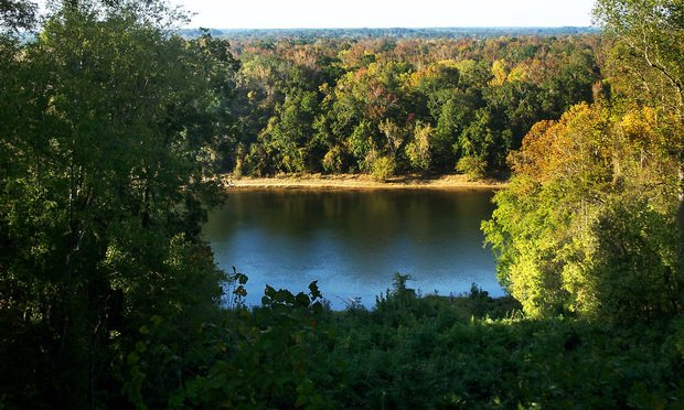 The Apalachicola river from behind the Gregory House in Torreya State Park/photo by Ebyabe via Wikimedia Commons