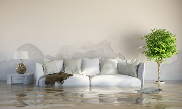 Flooded living room. Photo: Robert Kneschke/Shutterstock.com.