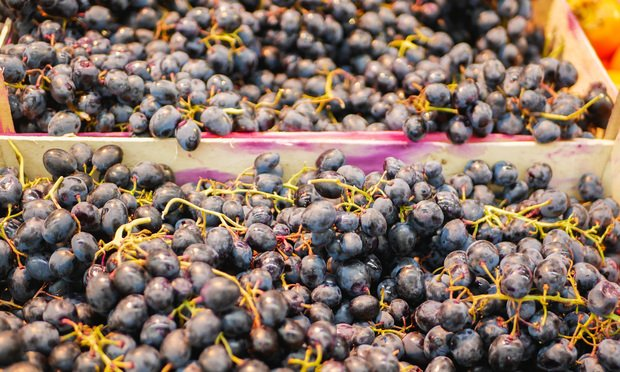 Dark grapes in a wooden box on a store counter. Photo: KAY4YK/Shutterstock.