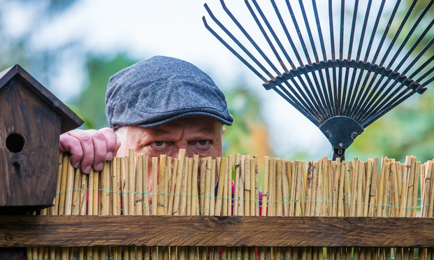 Neighbor Dispute. Photo: Rainer Fuhrmann/ Shutterstock.