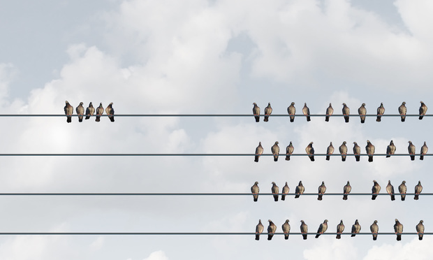 A group of birds sat on an electrical wire away from the main flock. Lightspring/Shutterstock.com