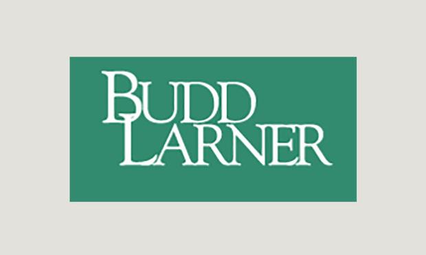 Budd Larner logo