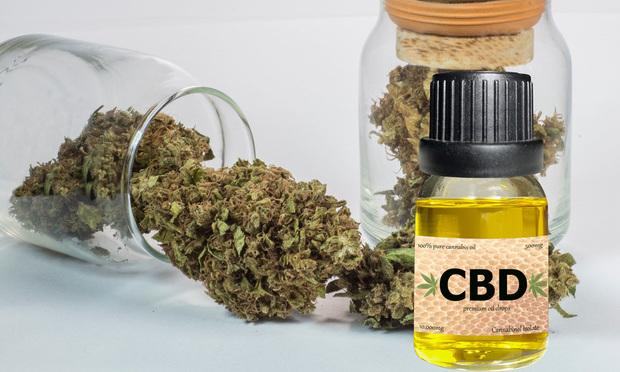 Hemp and CBD oil