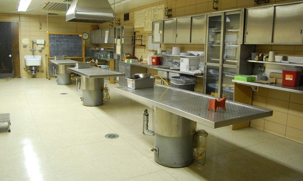 autopsy tables, medical examiner, death, dead