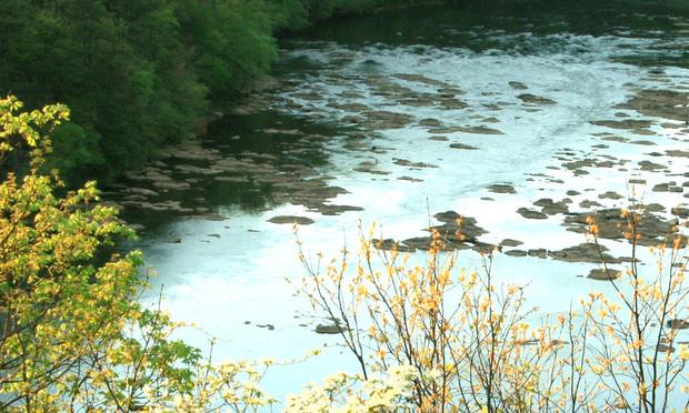 Apalachicola-Chattahoochee-Flint River Basin. (Photo: USGS National Water Census)