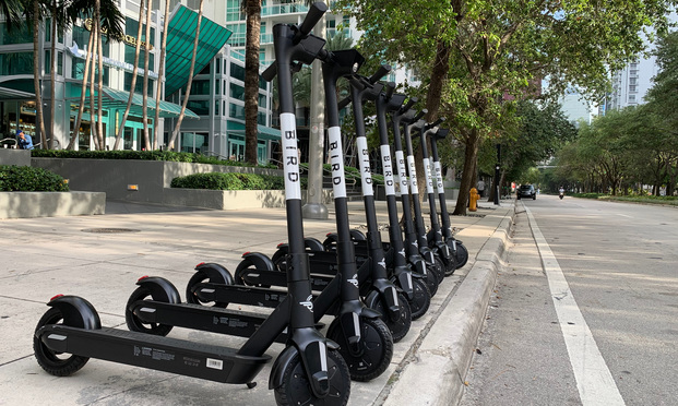 Large group of new Bird electric scooters.