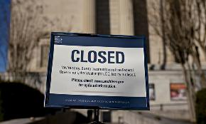 Law Firms Face 'Uncharted Waters' as Shutdown Grinds Some Practices to a Halt
