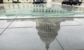 Pierce Bainbridge Grows Again With Partners in DC New York