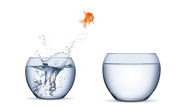 lateral move fish