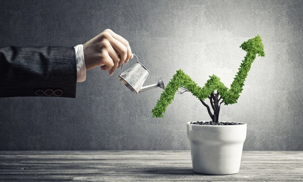 Concept of investment income and growth with tree in pot