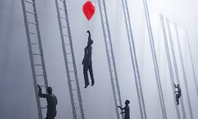 Why Midsize Firms Can Do Innovation Best But Often Don't