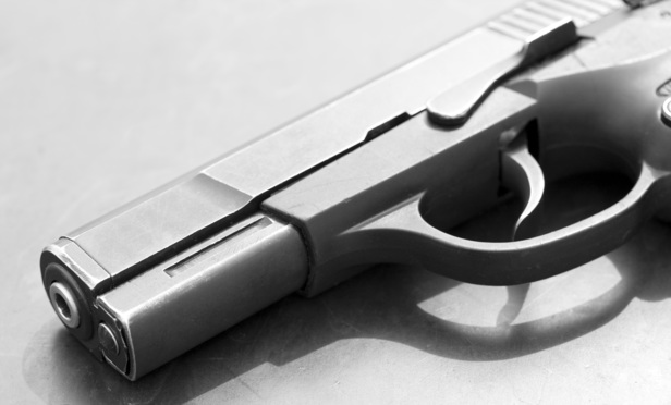 NY Gun Law Doesn't Match Okla. Offense, Panel Finds
