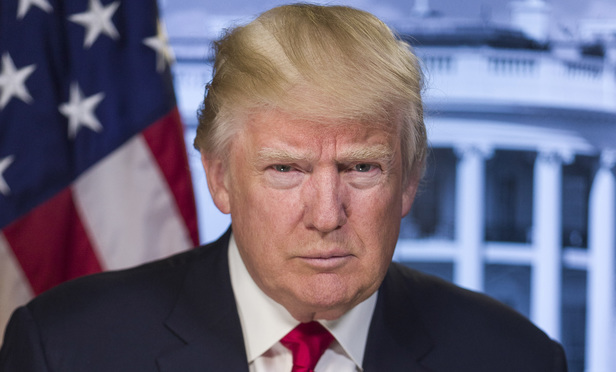 Portrait of President Trump
