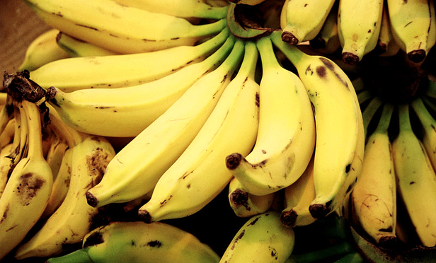 Appeals Court Derails Massive Chiquita Alien Tort Case