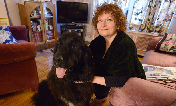 Maddy Tarnofsky, a tenant's attorney, with her dog, a 6 year old Newfoundland named Maizie